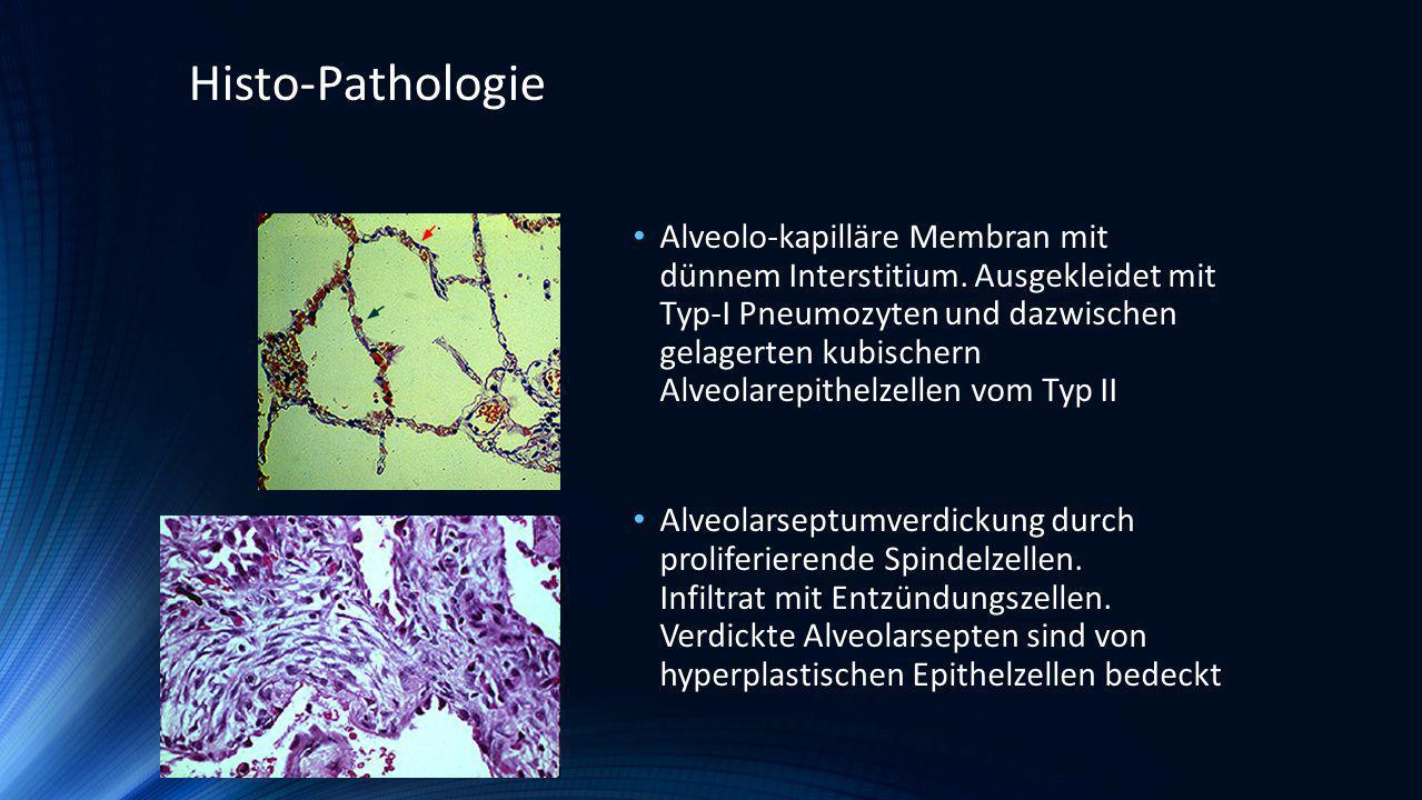 Histo-Pathologie