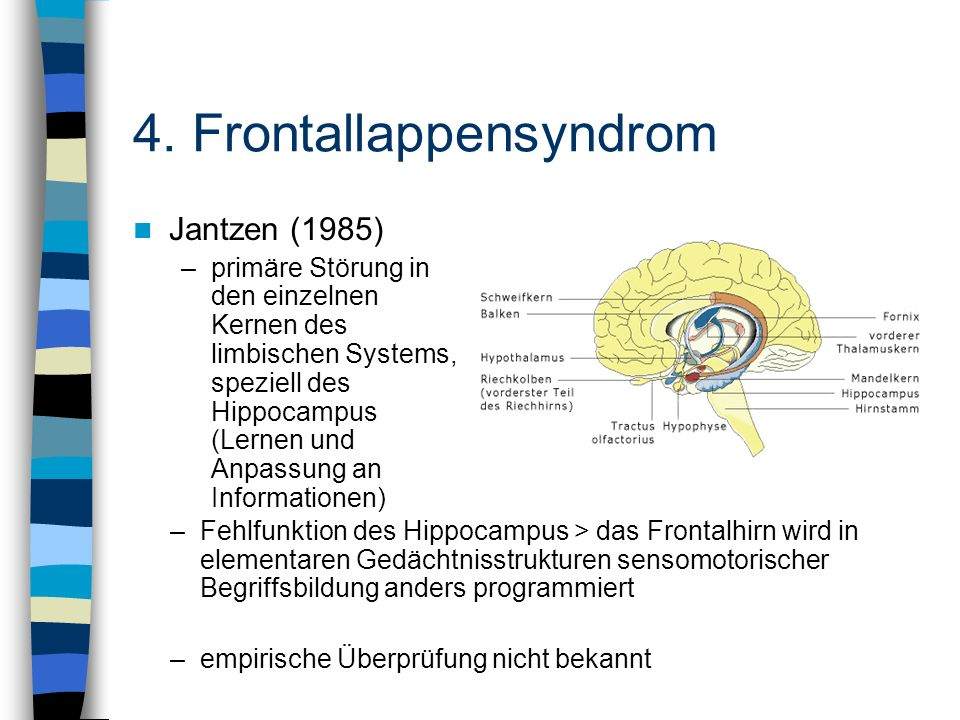 4. Frontallappensyndrom