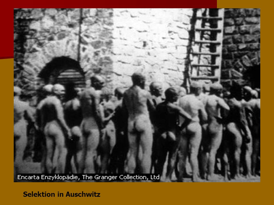 Selektion in Auschwitz