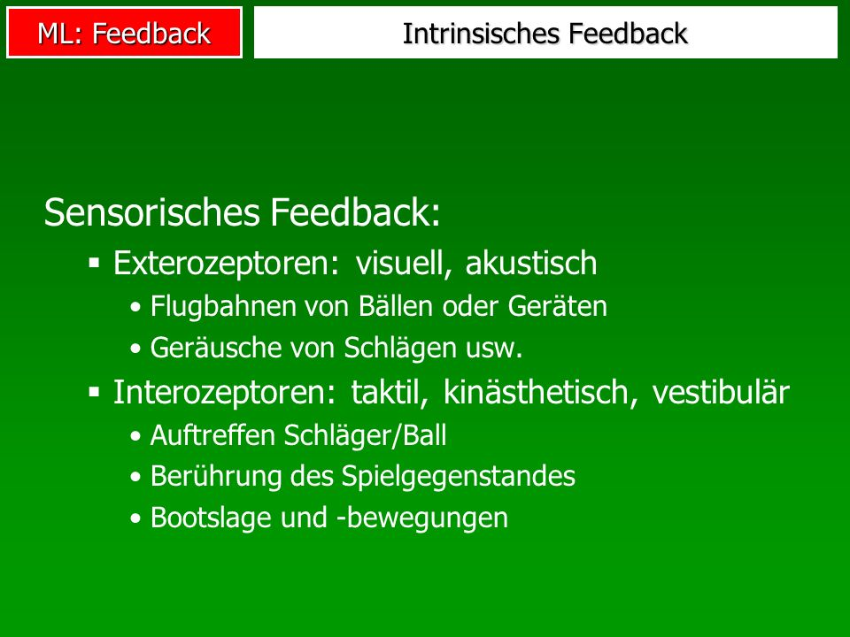 Intrinsisches Feedback