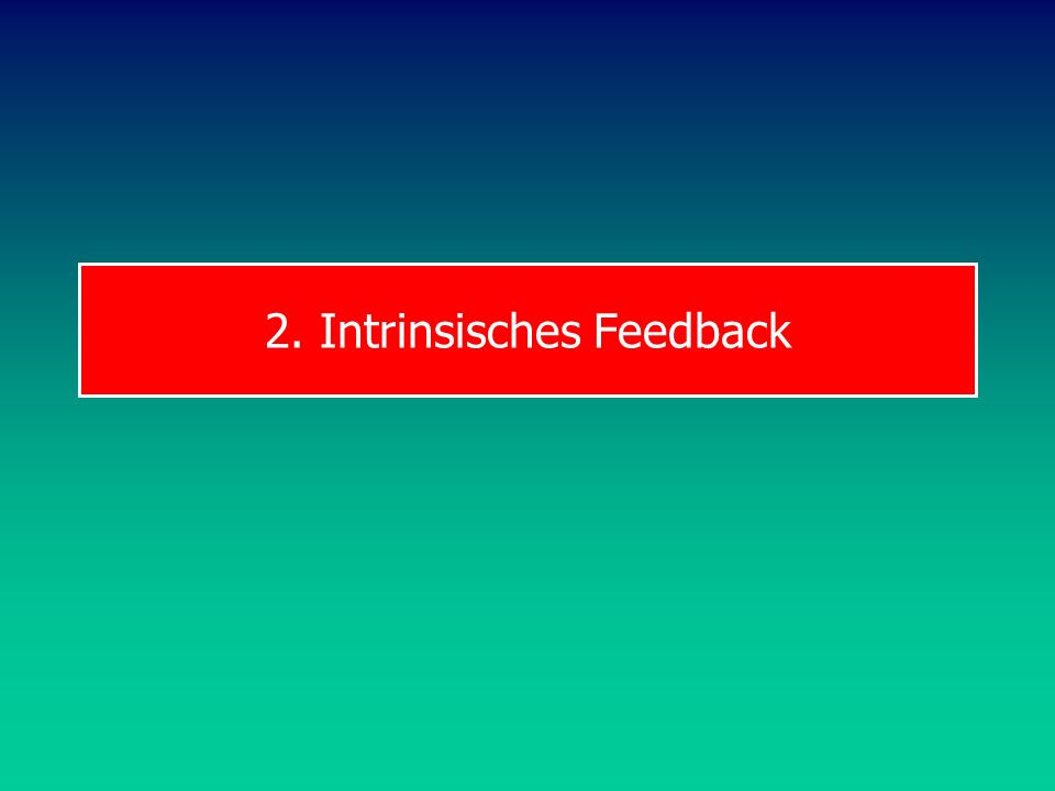 2. Intrinsisches Feedback