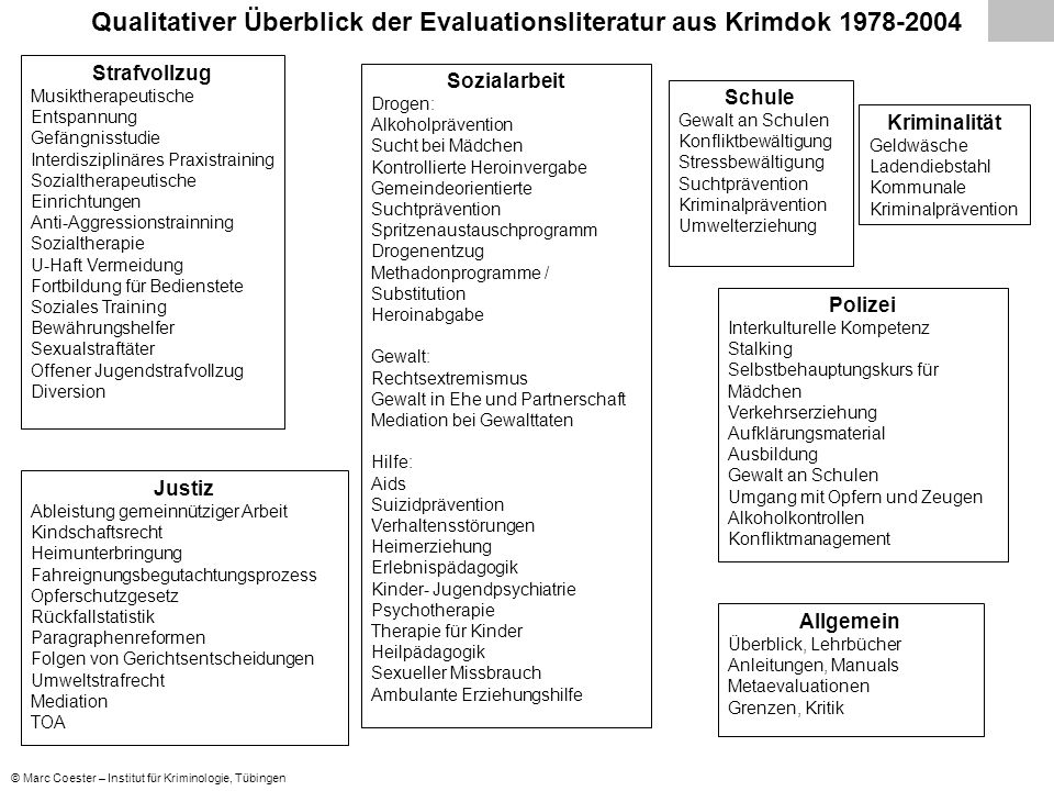Qualitativer Überblick der Evaluationsliteratur aus Krimdok 1978-2004