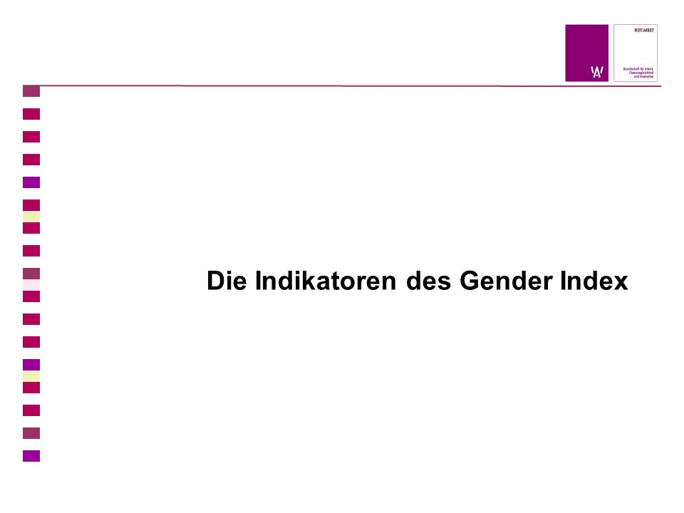 Die Indikatoren des Gender Index