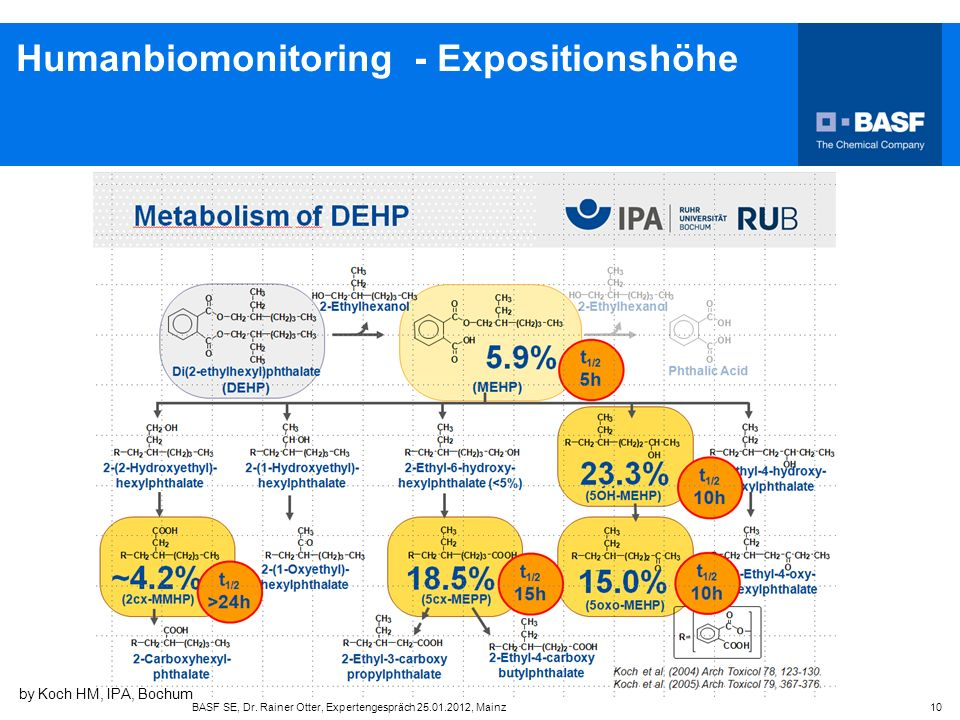 Humanbiomonitoring - Expositionshöhe