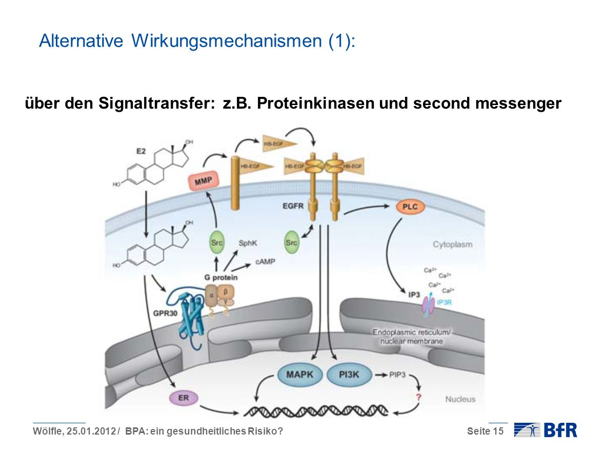 Alternative Wirkungsmechanismen (1):
