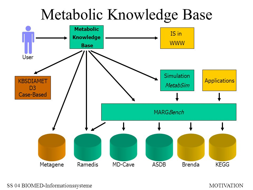 Metabolic Knowledge Base