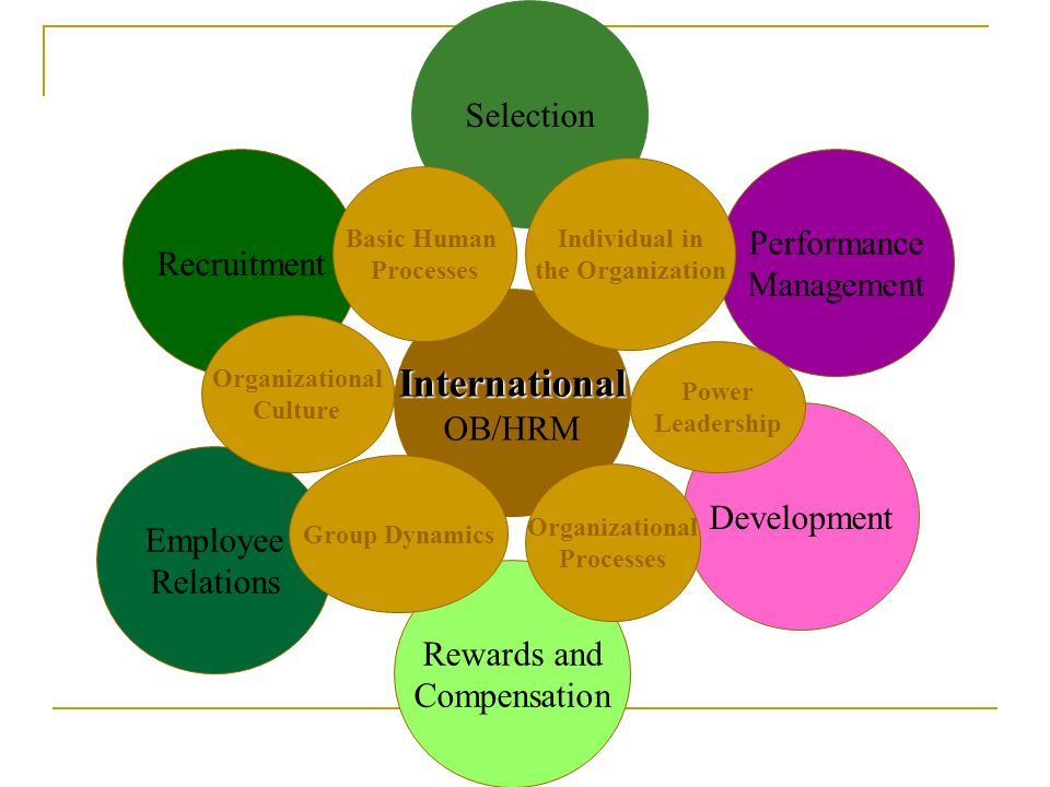 International Selection Performance Recruitment Management OB/HRM