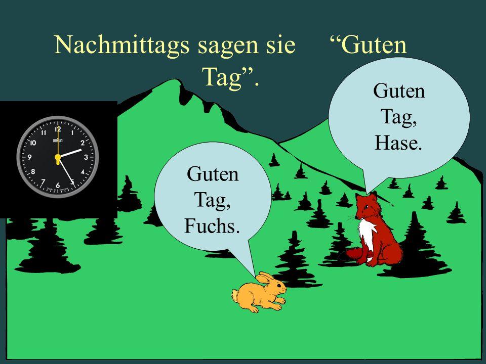 Hase Und Fuchs Powerpoint By Paul Widergren Ppt Video