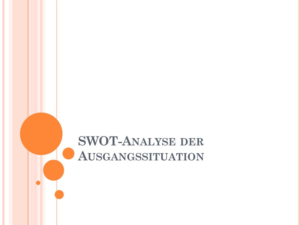 SWOT-Analyse der Ausgangssituation