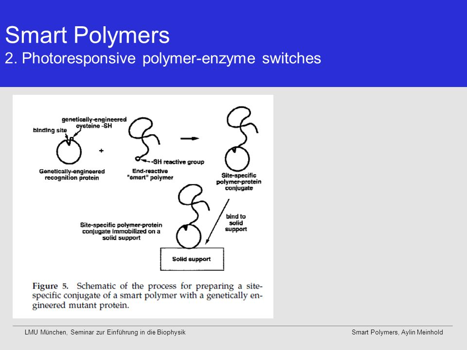 Smart Polymers 2. Photoresponsive polymer-enzyme switches
