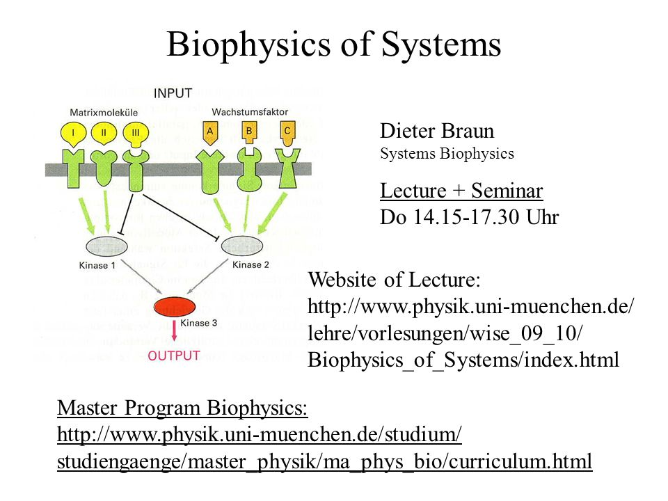 Biophysics of Systems Dieter Braun Lecture + Seminar