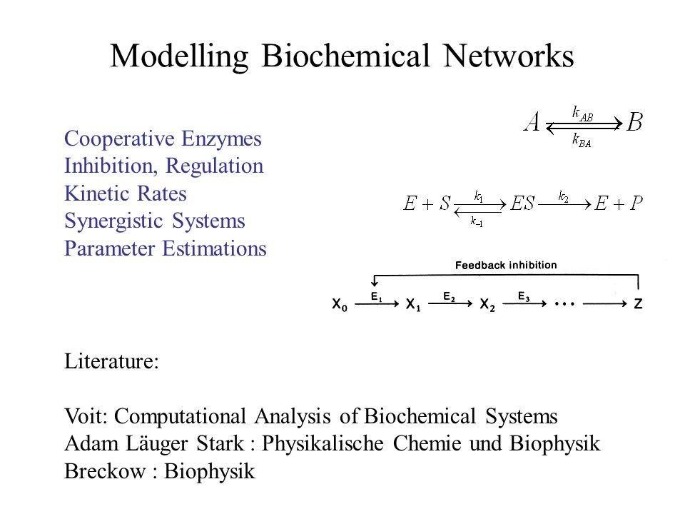 Modelling Biochemical Networks