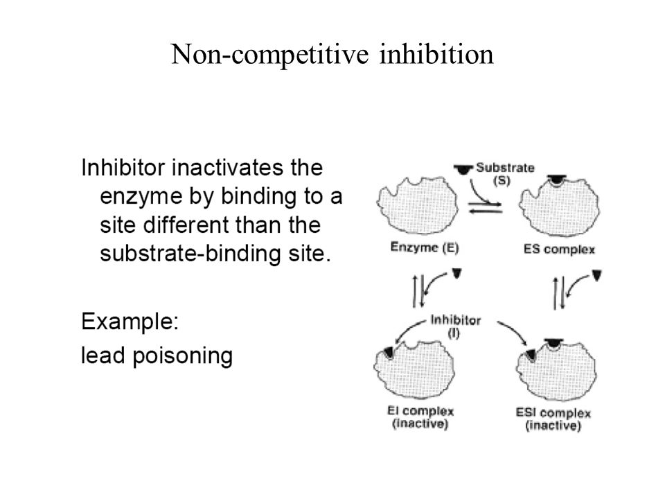 Non-competitive inhibition