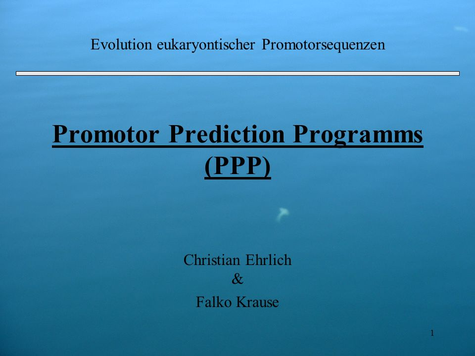 Promotor Prediction Programms (PPP)