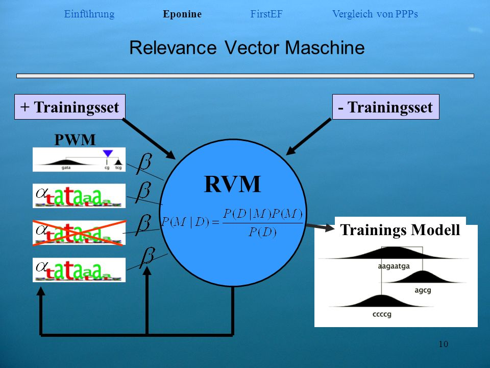 Relevance Vector Maschine