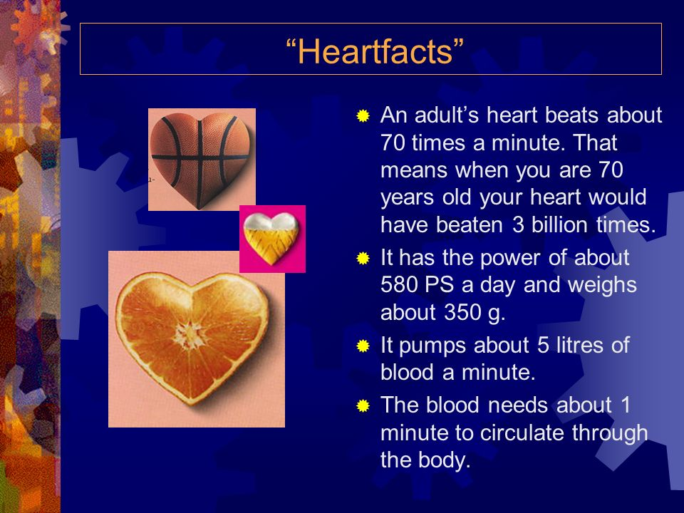 Heartfacts An adult's heart beats about 70 times a minute. That means when you are 70 years old your heart would have beaten 3 billion times.