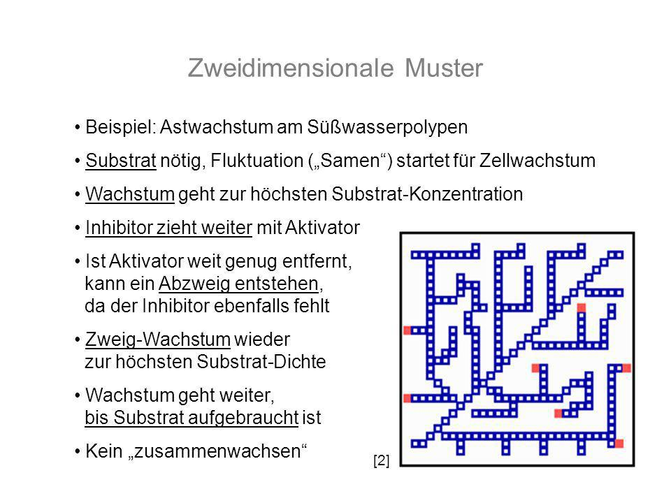 Zweidimensionale Muster