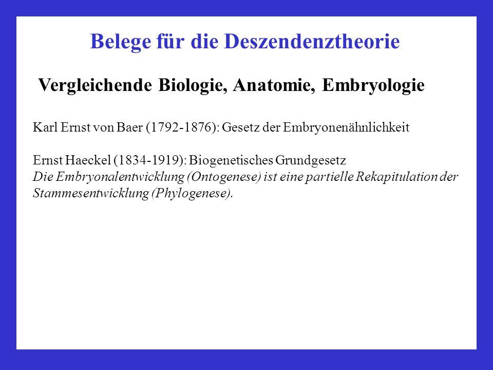 Vorlesung Zellbiologie Teil Biologie: - ppt video online herunterladen
