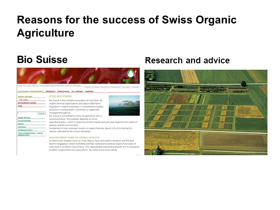 Reasons for the success of Swiss Organic Agriculture
