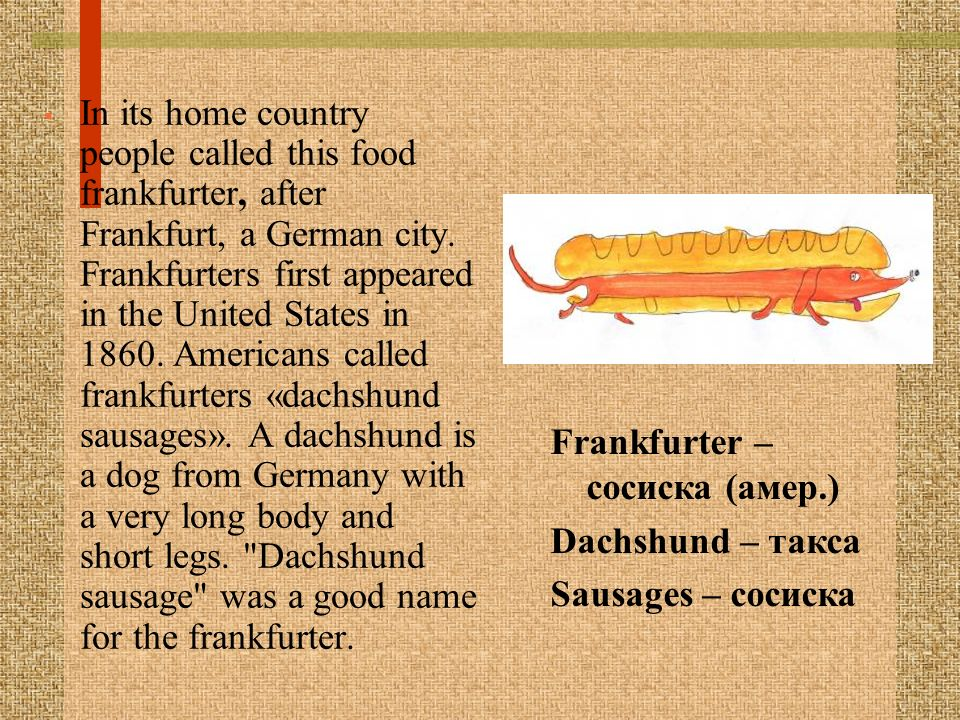 In its home country people called this food frankfurter, after Frankfurt, a German city. Frankfurters first appeared in the United States in 1860. Americans called frankfurters «dachshund sausages». A dachshund is a dog from Germany with a very long body and short legs. Dachshund sausage was a good name for the frankfurter.