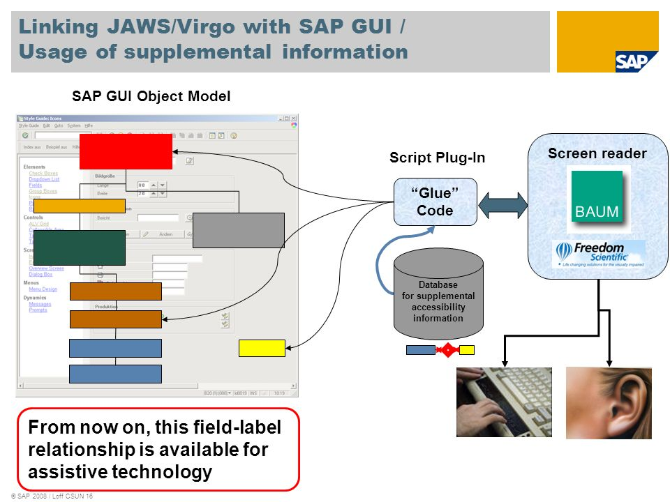 Linking JAWS/Virgo with SAP GUI / Usage of supplemental information