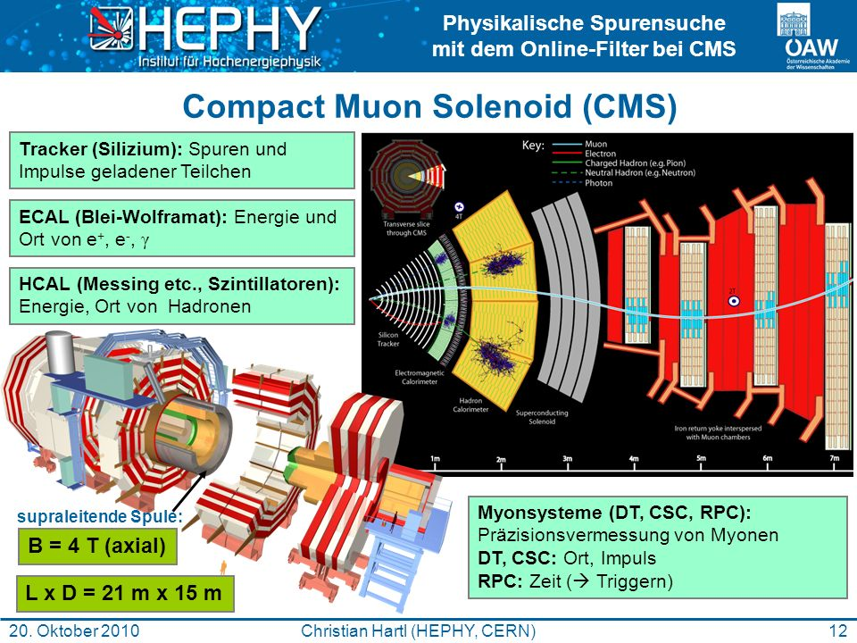Compact Muon Solenoid (CMS)