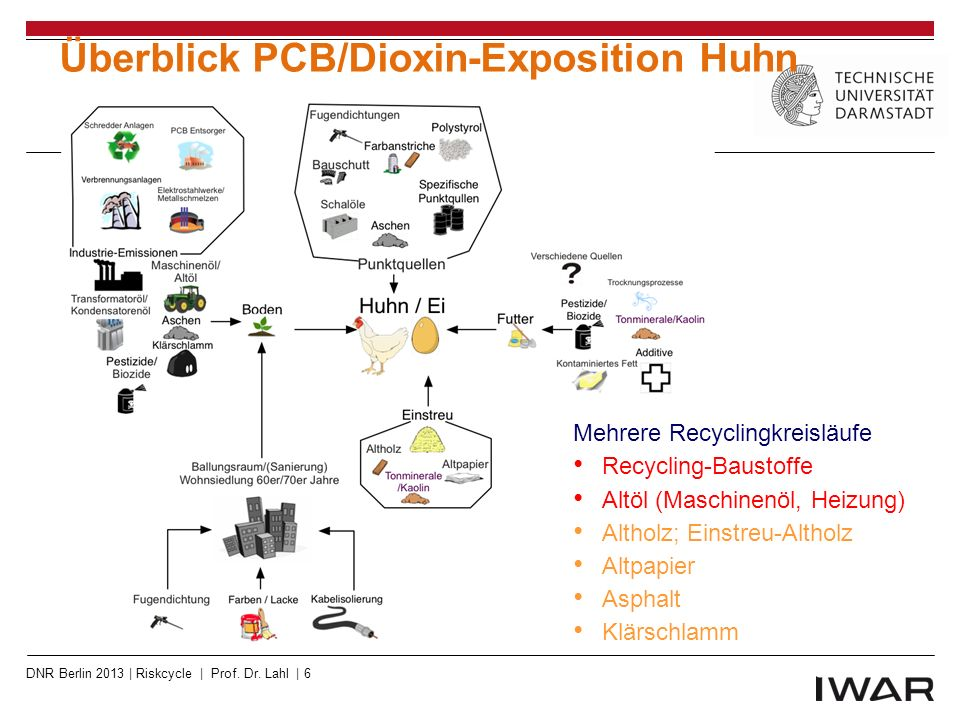 Überblick PCB/Dioxin-Exposition Huhn