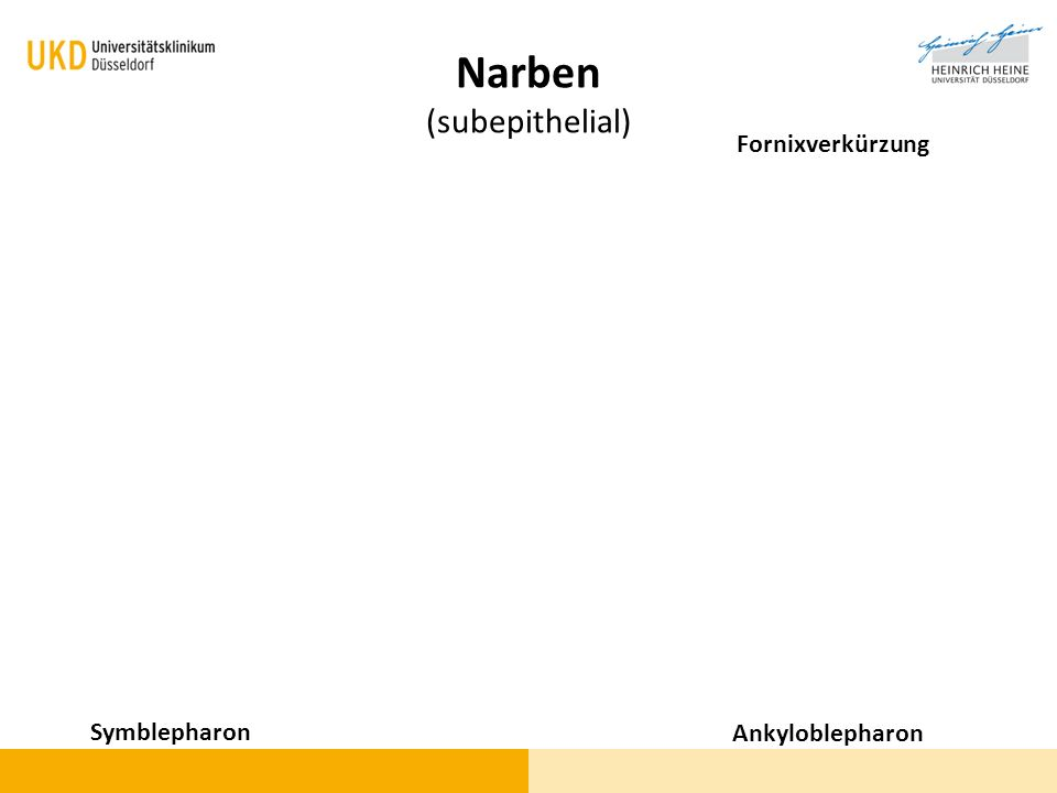 Narben (subepithelial)