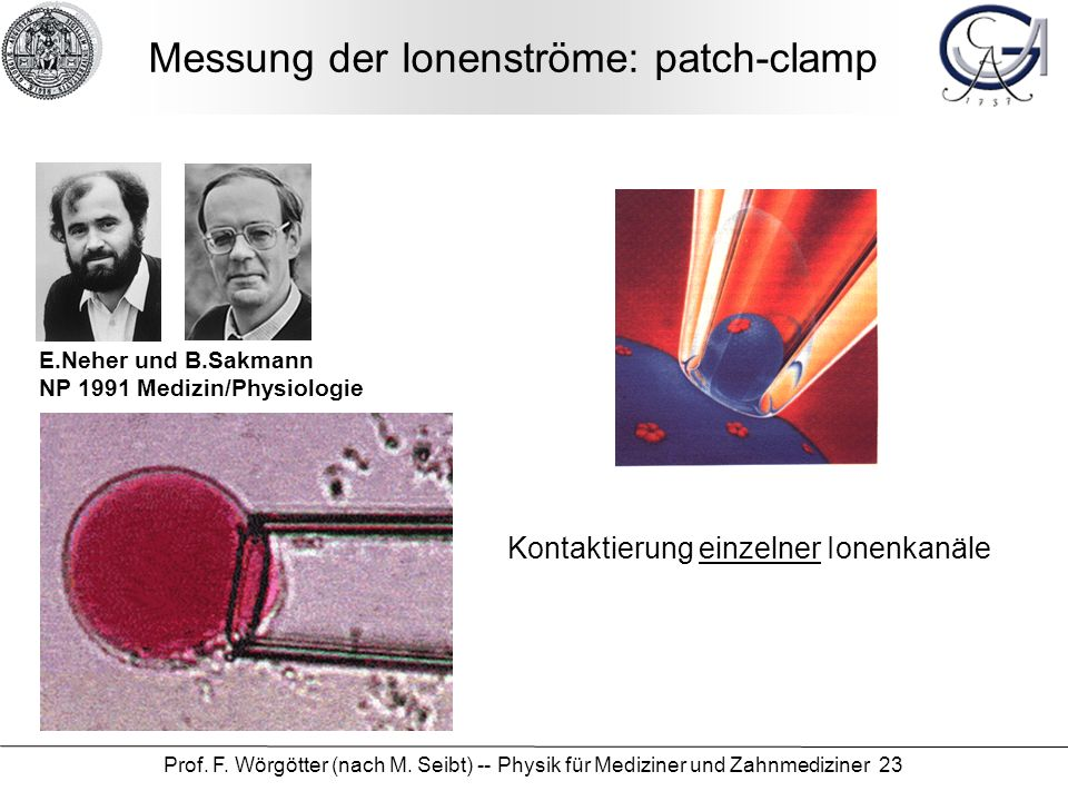 Messung der Ionenströme: patch-clamp