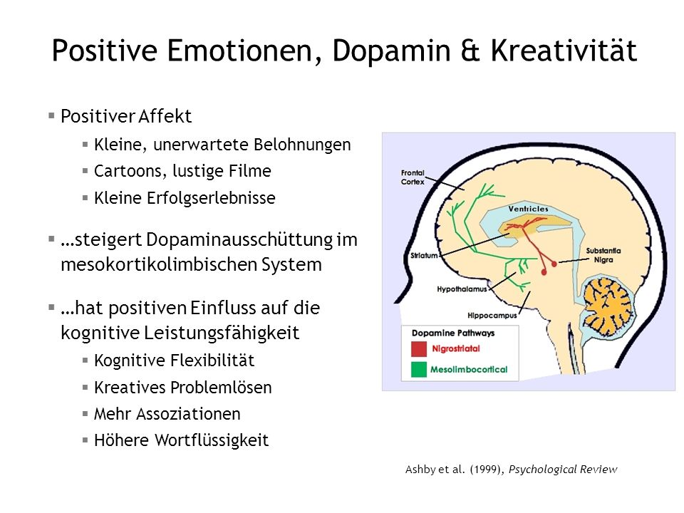 Positive Emotionen, Dopamin & Kreativität
