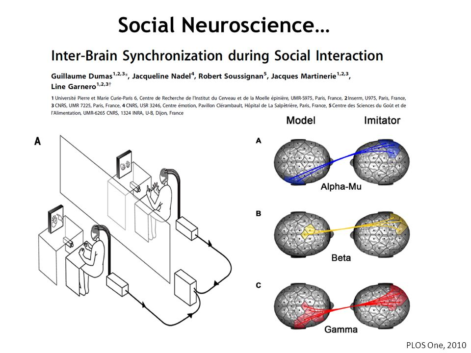 Social Neuroscience… PLOS One, 2010