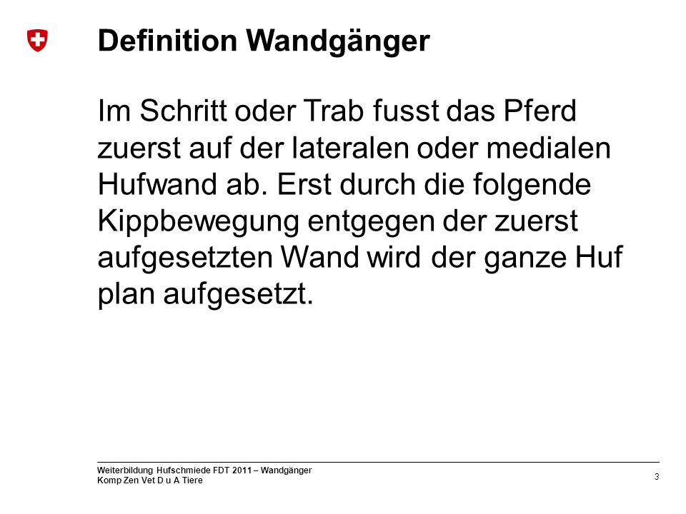 Definition Wandgänger