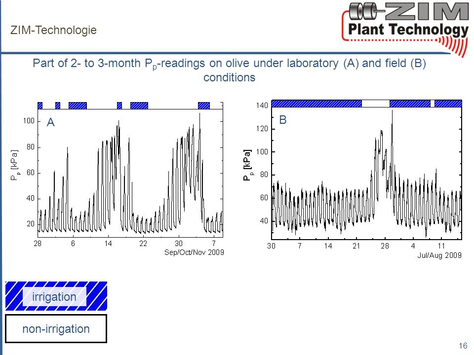 ZIM-Technologie Part of 2- to 3-month Pp-readings on olive under laboratory (A) and field (B) conditions.