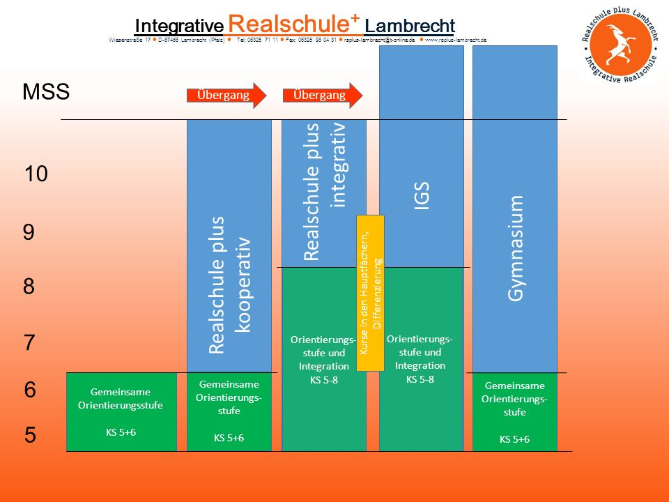 MSS IGS Realschule plus integrativ Gymnasium 10 Realschule plus