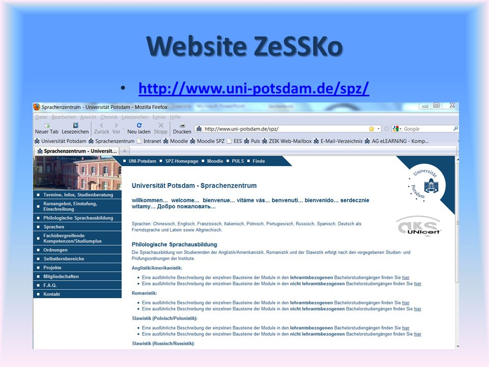 Website ZeSSKo