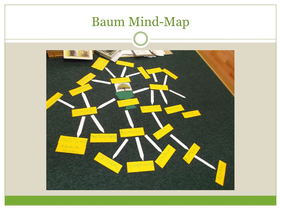 Baum Mind-Map