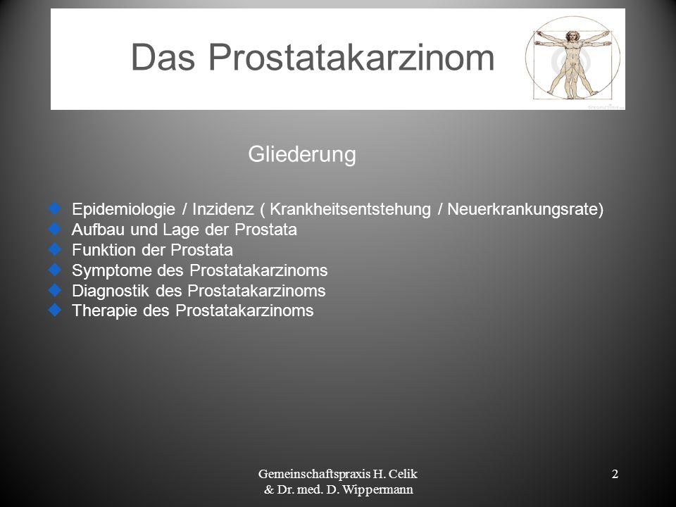 Gemeinschaftspraxis H. Celik & Dr. med. D. Wippermann - ppt video ...