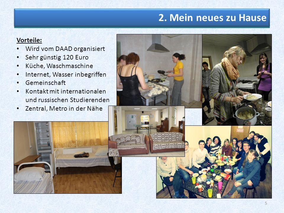 """Michaela Hildebrandt """"Studienland Europa"""" – - ppt herunterladen"""