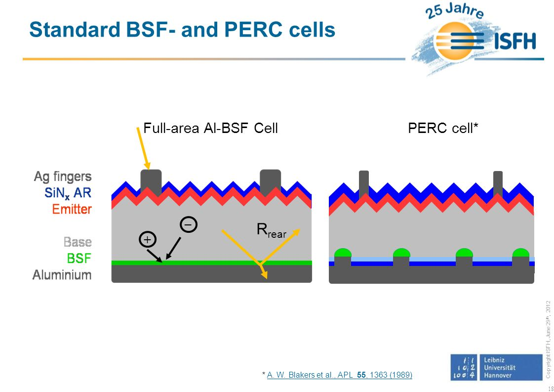 Standard BSF- and PERC cells