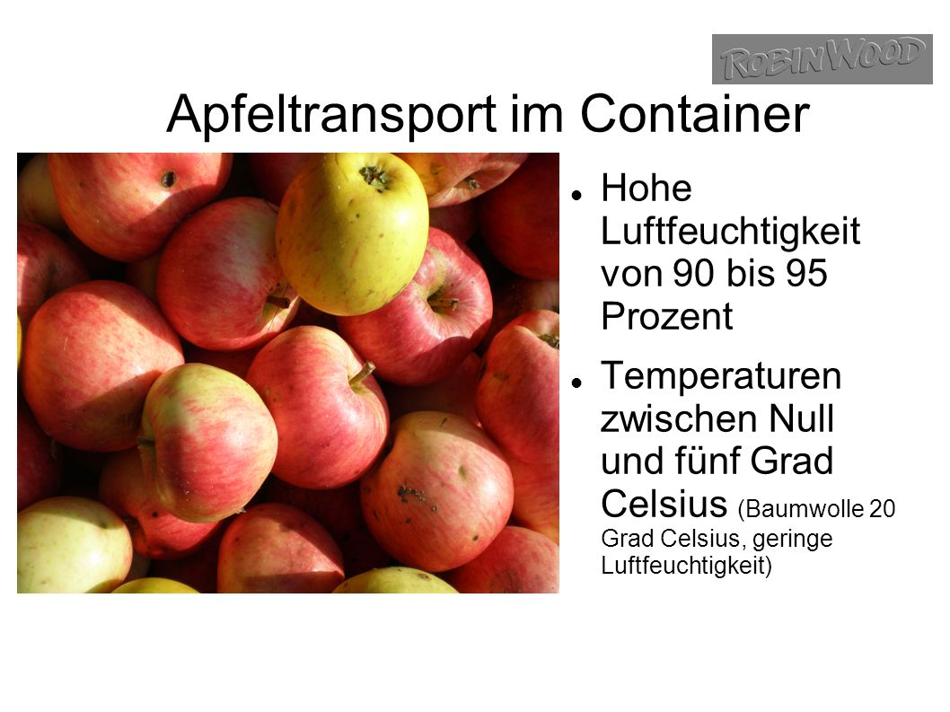 Apfeltransport im Container