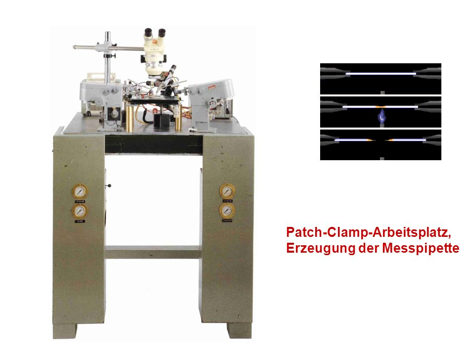 Patch-Clamp-Arbeitsplatz,