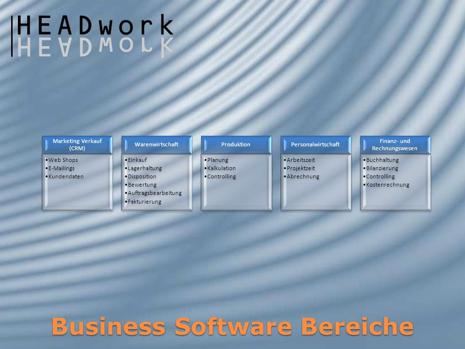 Business Software Bereiche