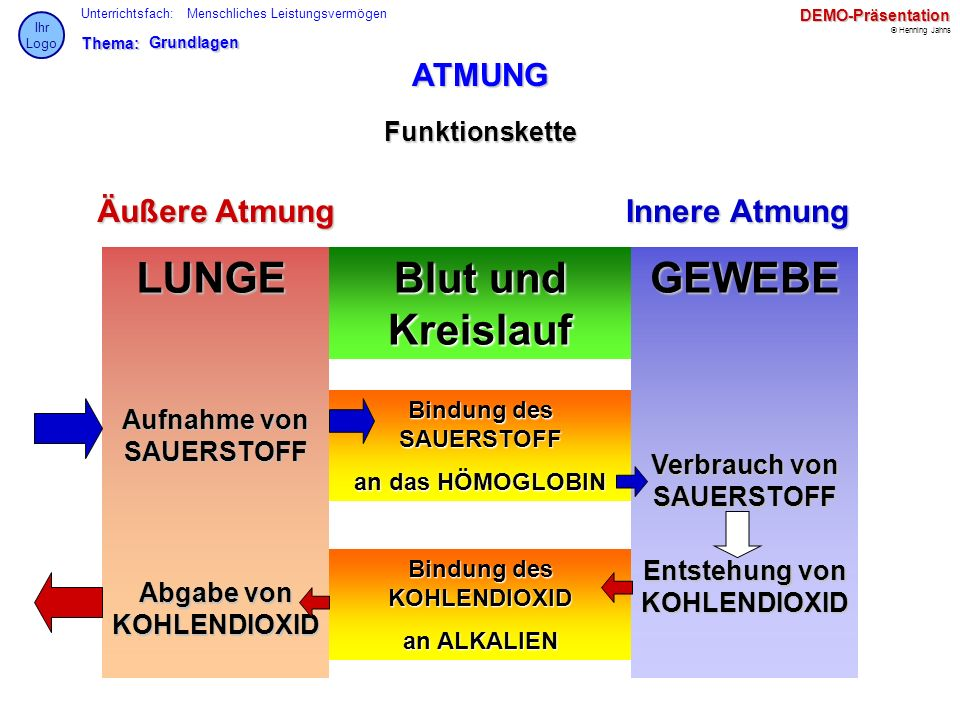 Bsg Online Luftrecht und Fl...