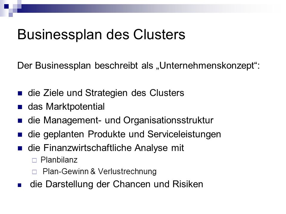 Businessplan des Clusters