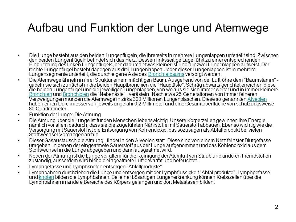 Arbeitsblatt Lunge Und Atemwege : Ziemlich herz und lungen funktion galerie anatomie ideen