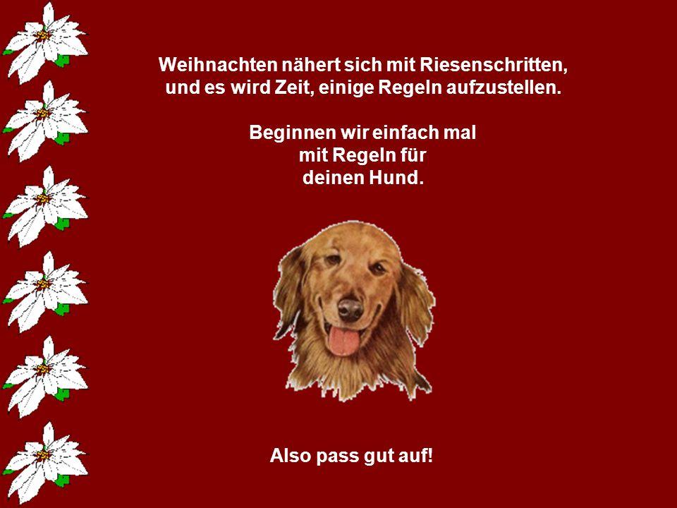Weihnachtsregeln von Margitta /10 popcorn-fun.de. - ppt video online ...