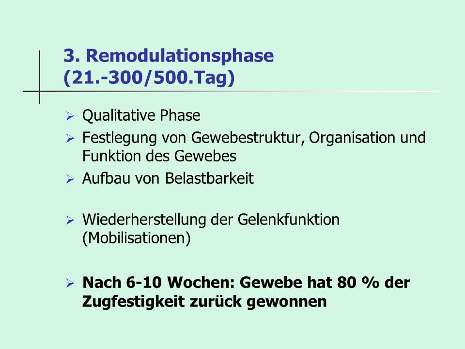 3. Remodulationsphase (21.-300/500.Tag)