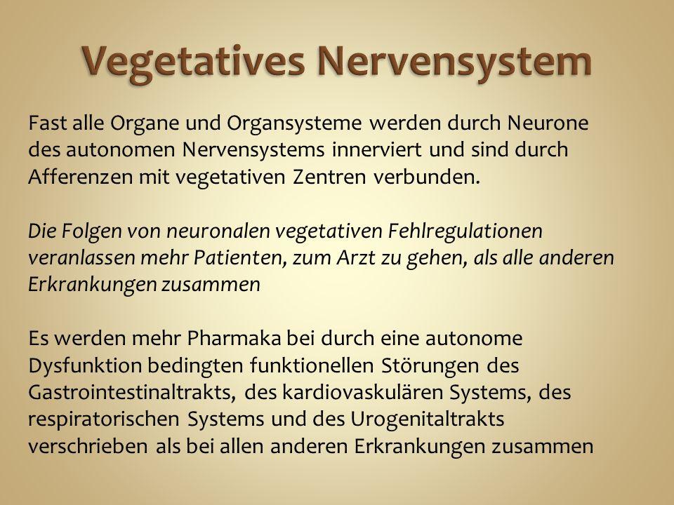 Übersicht Neurologie GN1 Allgemein Übersicht Embryologie - ppt video ...