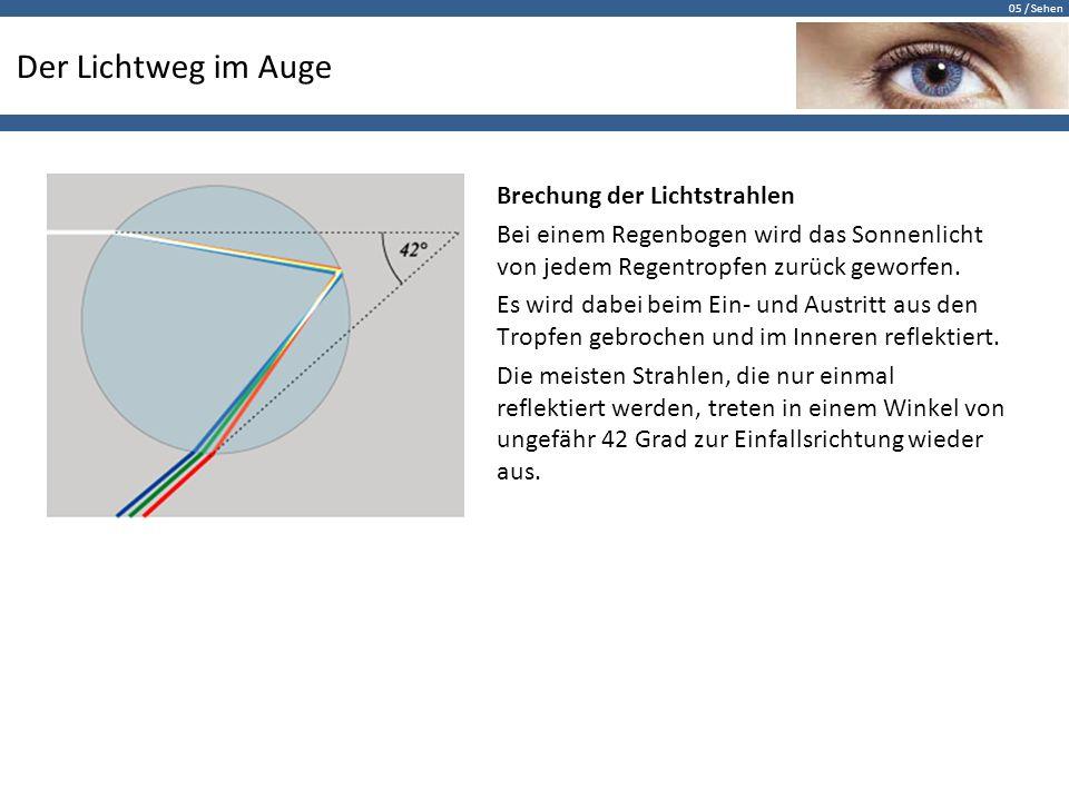 Das Auge I Übersicht Abbildender Apparat (Linse etc.) - ppt ...