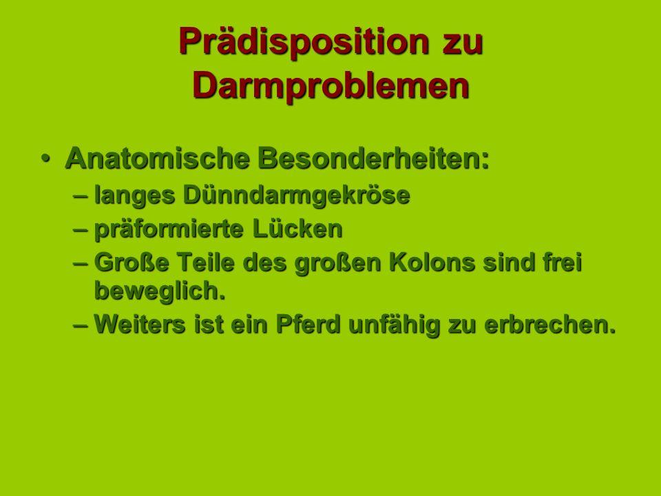 Themen aus der Internen Medizin für Pferde-Wissenschaftler VI - ppt ...